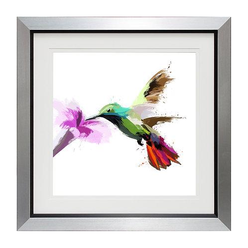 Hummingbird I Framed Wall Art