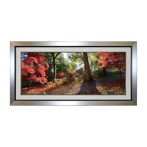 Autumn Trees Framed Wall Art