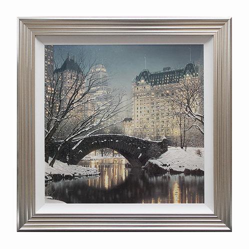 Central Park Liquid Framed Wall Art