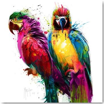 Plexi Collection - Tropical Colours I