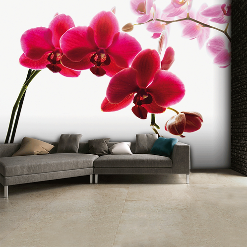 Pink Orchid Feature 4 Piece Wall Mural