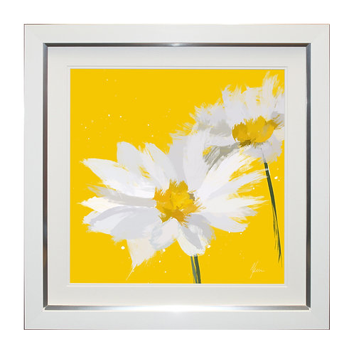 Daisy Framed Wall Art