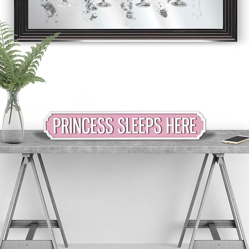 Princess Sleeps Here Vintage Street Sign