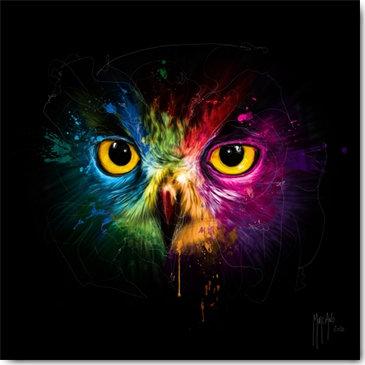 Patrice Murciano OWL Framed Wall Art