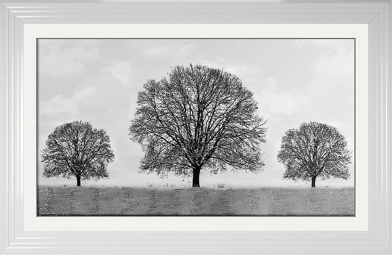 Winter Tree Liquid Resin Framed Artwork - 114x74cm