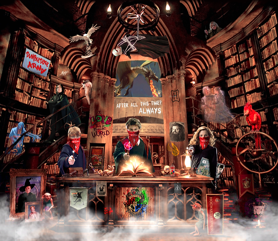 Dirty Hans HARRY POTTER GONE WILD Limited Edition Print