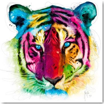 Plexi Collection - Tiger Pop