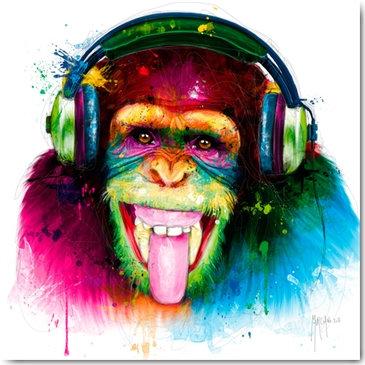 Plexi Collection - DJ Monkey