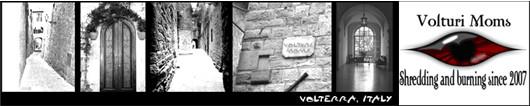 Volterra_sig copy v2.jpg