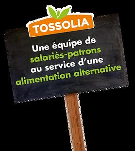 Panneau valeurs Tossolia.png