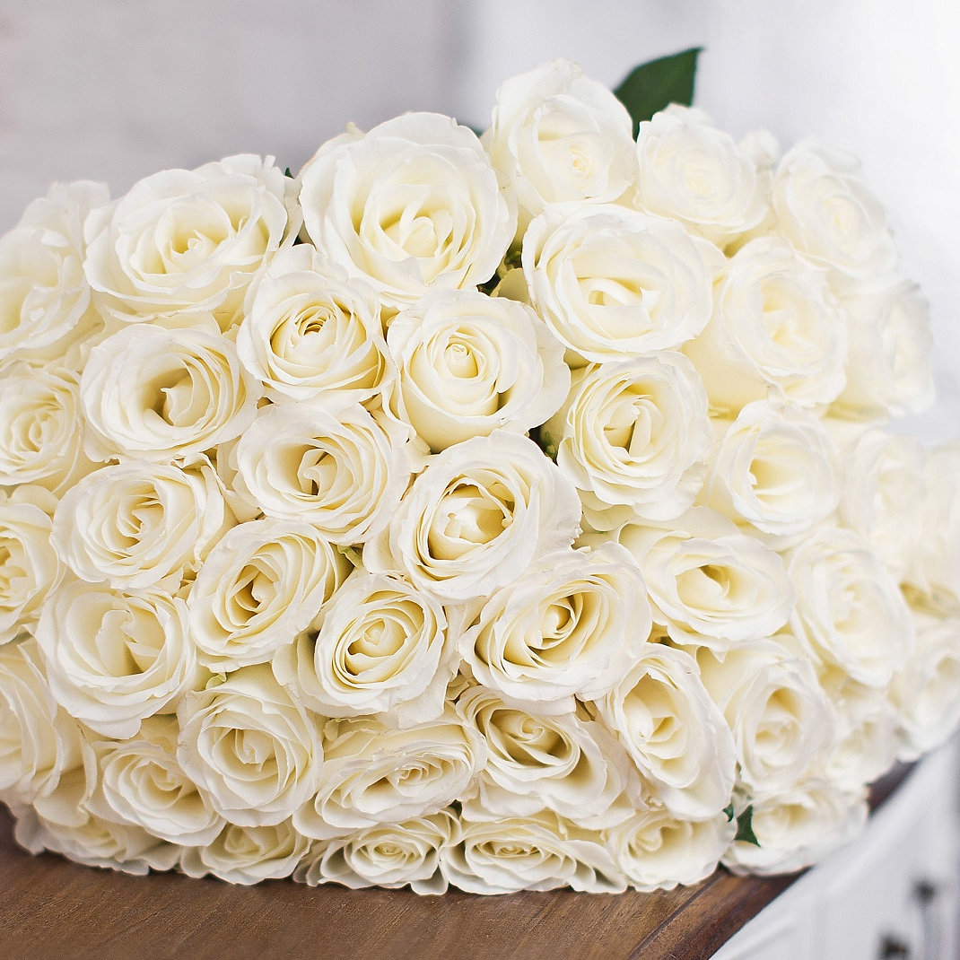 Roses White (Ecuador)   51 Stems. Long: 70 80 Cm
