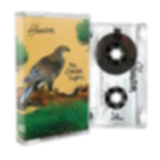 TLT Cassette 1.png
