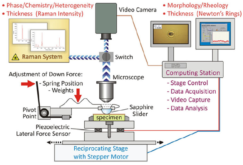 Monitoring real-time, in situ tribology with interfacial dynamics (video optical microscopy) and interfacial chemistry (micro-Raman spectroscopy).