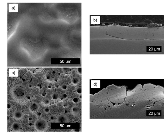 C-ZnNi (a) surface morphology and (b) cross section, and D-ZnNi (c) surface morphology and (d) cross section secondary electron images.