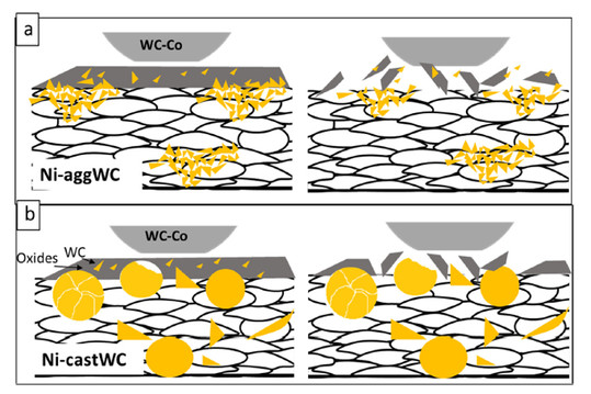 A schematic diagram showing MML development in the presence of agglomerated WCNi in (a) Ni-aggWC and cast WC in (b) Ni-castWC; WC fragments are drawn by the oxide when it breaks up to form wear debris in Ni-aggWC; large WC particles remain in place when the oxide breaks up in Ni-castWC.
