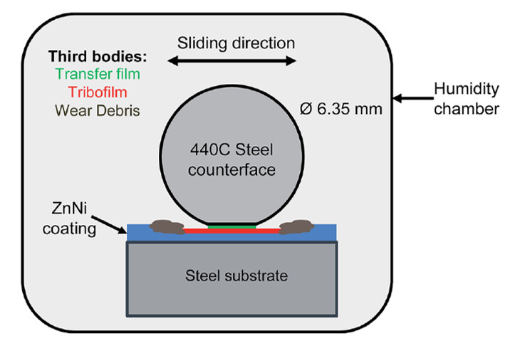 Schematic of reciprocating sliding wear test and third bodies.
