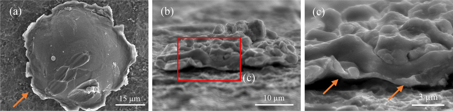 SEM images of the splats (a) Top view of the SP splat (b) side view of the IP splat (c) higher magnification image of IP splat; Arrow indicates jetting.