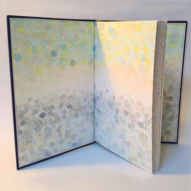 Granta Books Commission - Design Binding of Cynan Jones's Novel Stillicide
