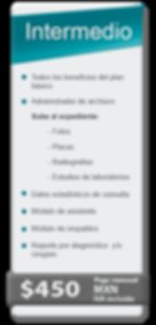 Plan_Intermedio_2019_Página_Web.png