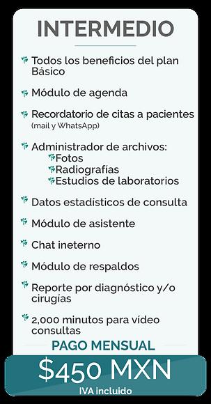 Precios-página-web-intermedio-mensual.png