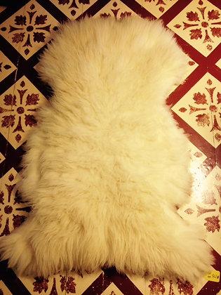White Pelt