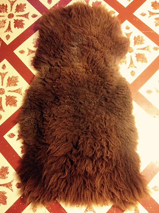 Brown Pelt
