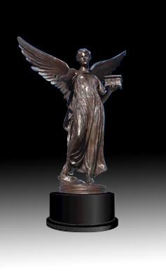 Custom Bronze award