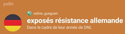 exposés_résistance_allemande.png