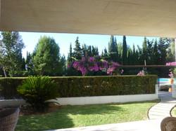 Eneas garden from terrace