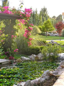 Eneas and Atlas Gardens