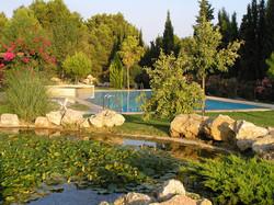 Eneas garden and pool
