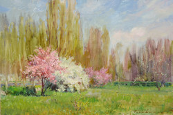 Trees Blossoming