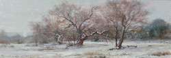 A Winter Etude. The Old Mulberry Tre