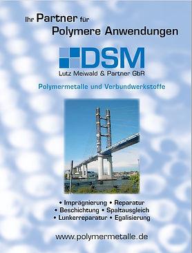 DSM Prospekt Deckblatt.jpg