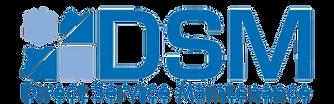 DSM Neu mit schriftzug transparent.png