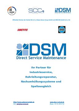 Deckblatt DSM Präsi gesamt.png