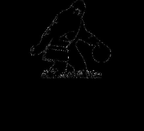 TH_DGC_Logo.png