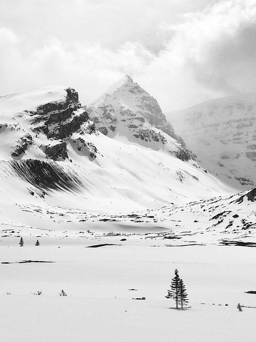 CANVAS PRINT : Monochrome Mountain