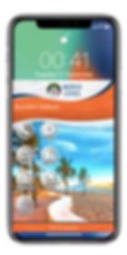 Brandon Digital Business Card.png