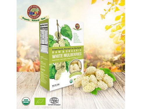 有機生機白桑莓 (無麩質) Earth Harvest SuperfoodsRaw & Organic White Mulberry (Gluten Free
