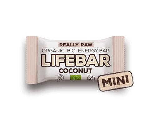 未加工迷你Lifebar有機椰子能量棒(25克)Raw Organic Coconut Lifebar (25g)