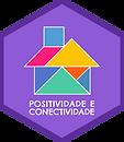 Positividade e conectividade.png