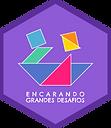 ENCARANDO GRANDES DESAFIOS.png