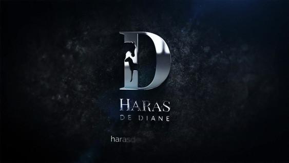 Motion Design Haras de Diane