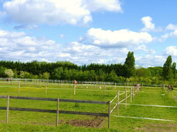 paddocks roseval