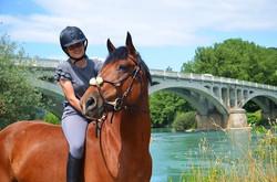 cours équitation écuries d'aoste