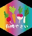 有機野菜の販売ならオーガニックパパ