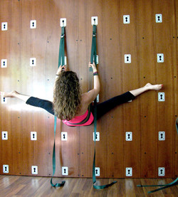 Yoga wall at my studio!