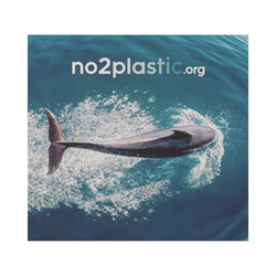no2plastic.org