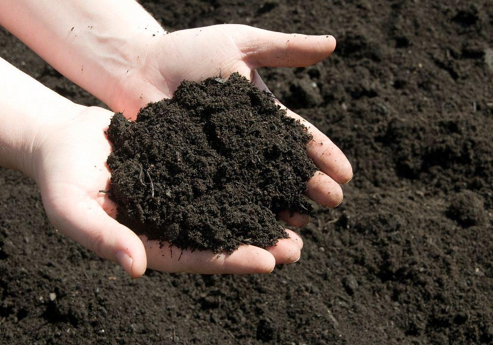 Soil, Fertillizer, Manure, Sterile, Seed Free, Bare Hands
